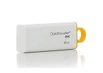 8GB Kingston DataTraveler USB Drive